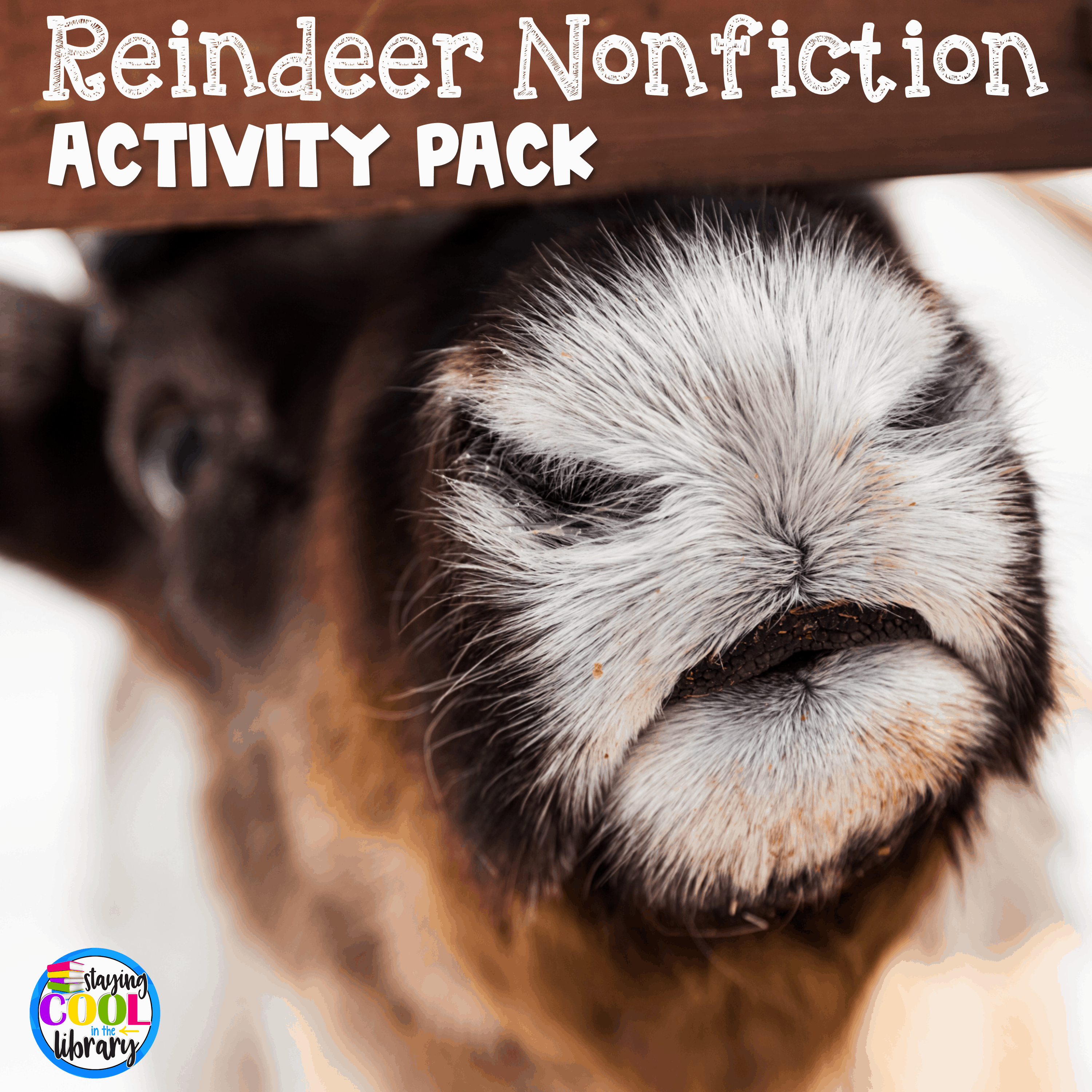 Reindeer Nonfiction Activity Pack, 12 Days Christmas Lesson Plans