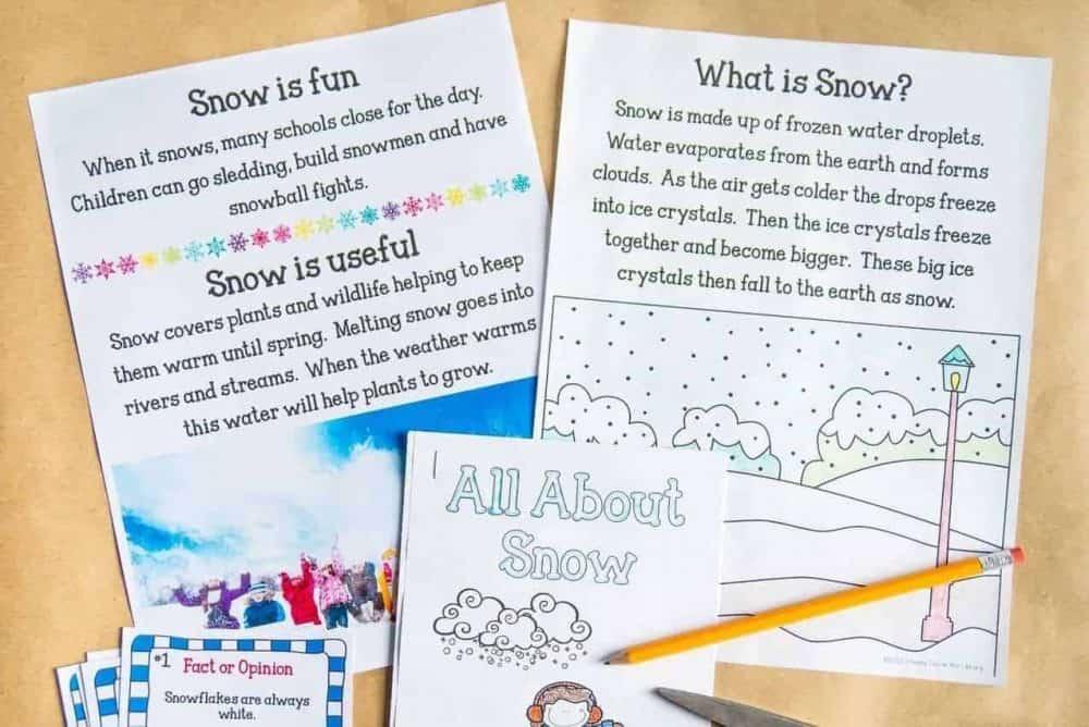 Snow - Nonfiction Activity Pack